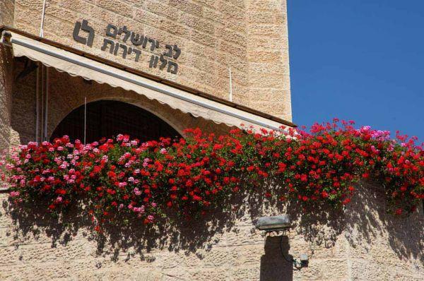 לב ירושלים ירושלים