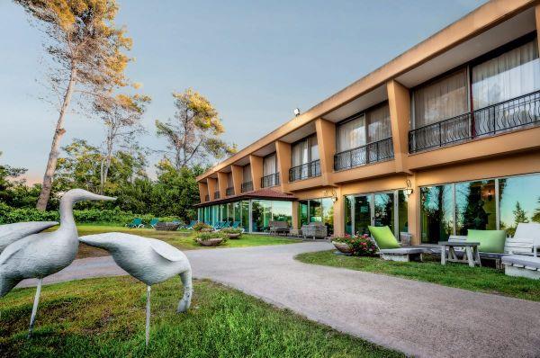 אחוזת אסיינדה ביער ספא מלון בגליל מערבי