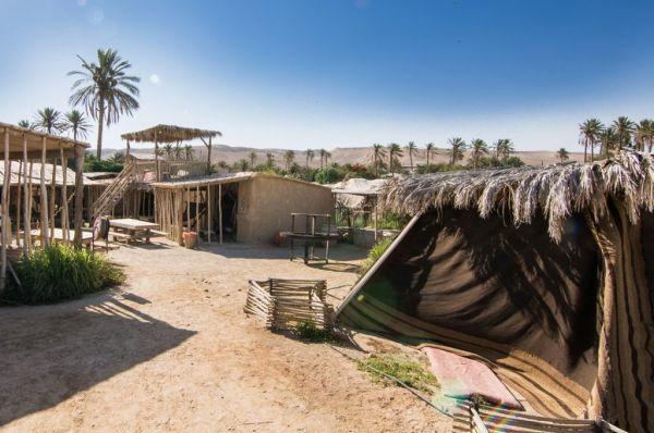 כפר הנוקדים אירוח כפרי בים המלח