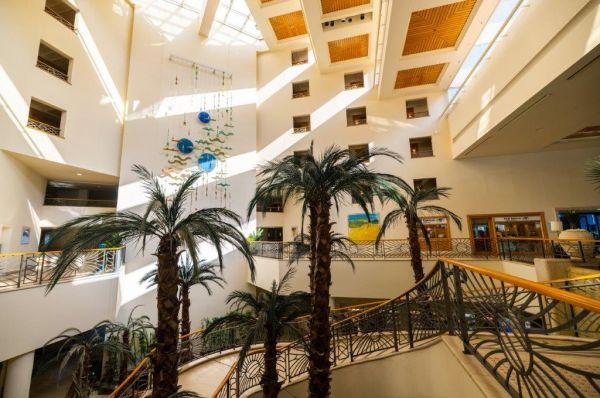 דויד מלון ספא בים המלח