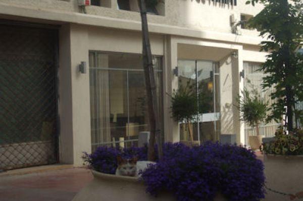 בית מלון גלרי חיפה