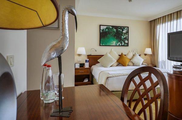 מלון דה לוקס יערות הכרמל