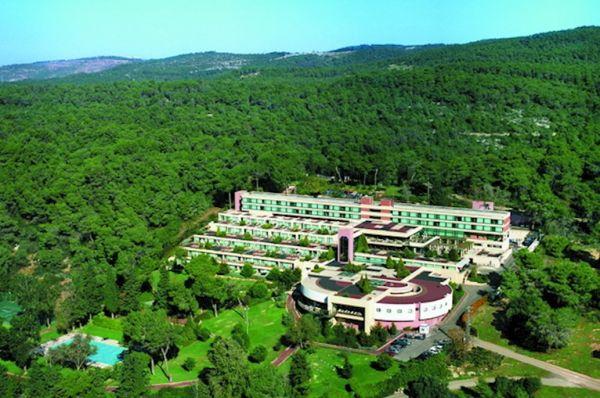בית מלון יוקרתי יערות הכרמל