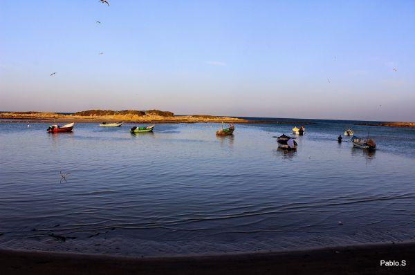 כפר הנופש דור אירוח כפרי בנתניה ומישור החוף