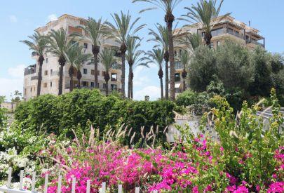 гостиница Andromeda Тель Авив