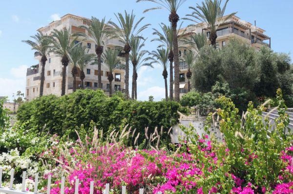 отель в  Тель Авив Андромеда
