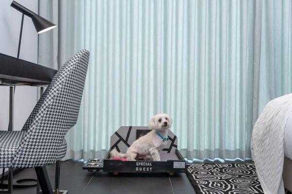 малон  НИКС Герцелия в  Тель Авив