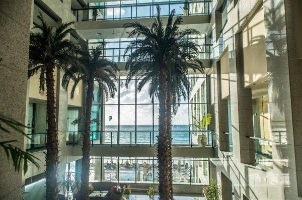 בית מלון אוקיינוס תל-אביב והמרכז