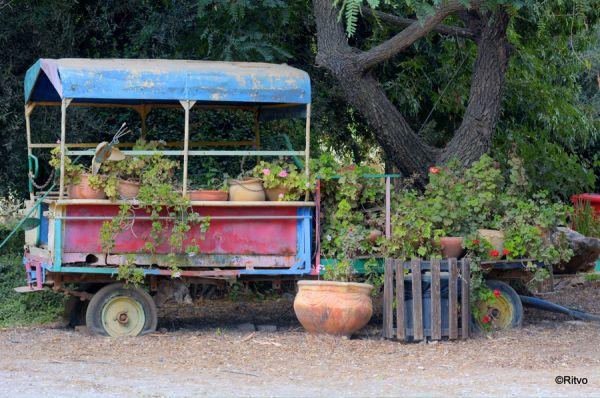 כפר נופש עמיעד טבריה, סובב כנרת ועמקים