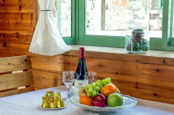 אירוח כפרי דריוס (אוליב על הכנרת לשעבר) בטבריה, סובב כנרת ועמקים