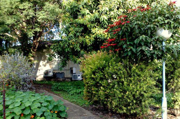 דגניה ב בית הארחה טבריה, סובב כנרת ועמקים