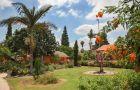 El Mul Golan Sha'ar HaGolan Kibbutz