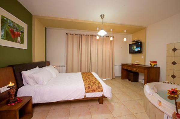 בית מלון נרקיס גליל עליון והגולן - דה לוקס