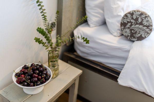 עין זיוון לן בגולן אירוח כפרי - חדר כרמים