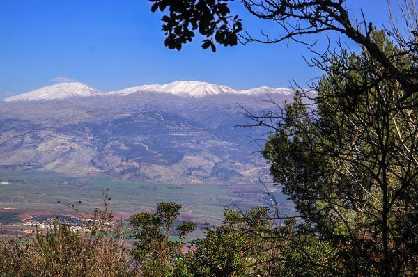 כפר נופש מנרה גליל עליון והגולן