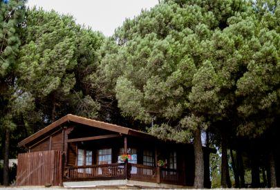 בית הארחה אורטל בגליל עליון והגולן