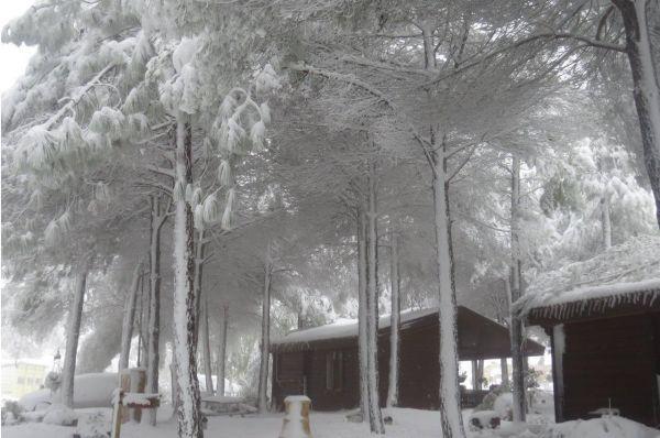 אורטל אירוח כפרי בגליל עליון והגולן
