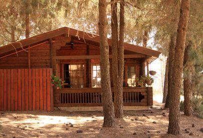 אורטל אירוח כפרי - בקתות עץ