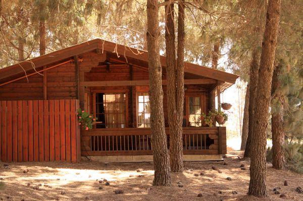 אורטל בית הארחה בגליל עליון והגולן - בקתות עץ