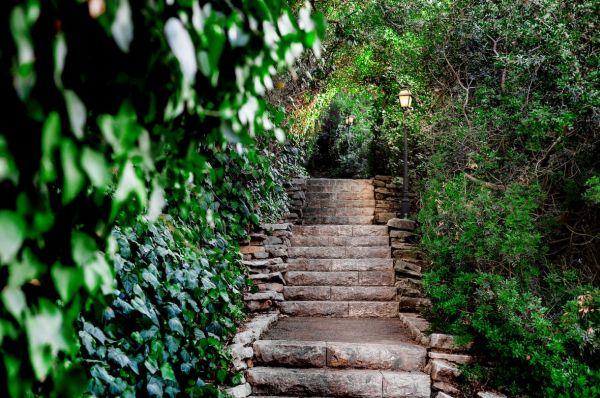 אחוזת אסיינדה ביער ספא מלון גליל מערבי