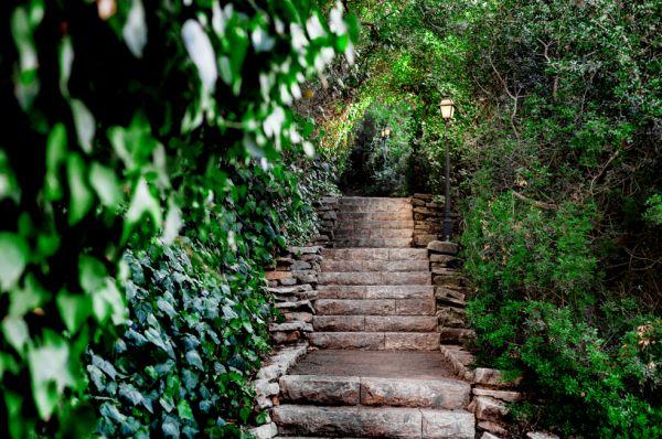ספא אחוזת אסיינדה ביער